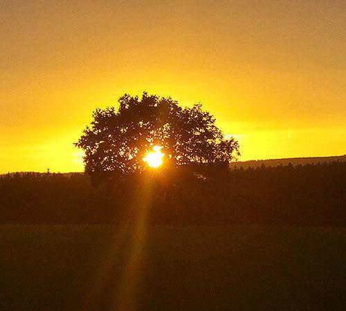 Sonnenuntergang bei Adam & Eva